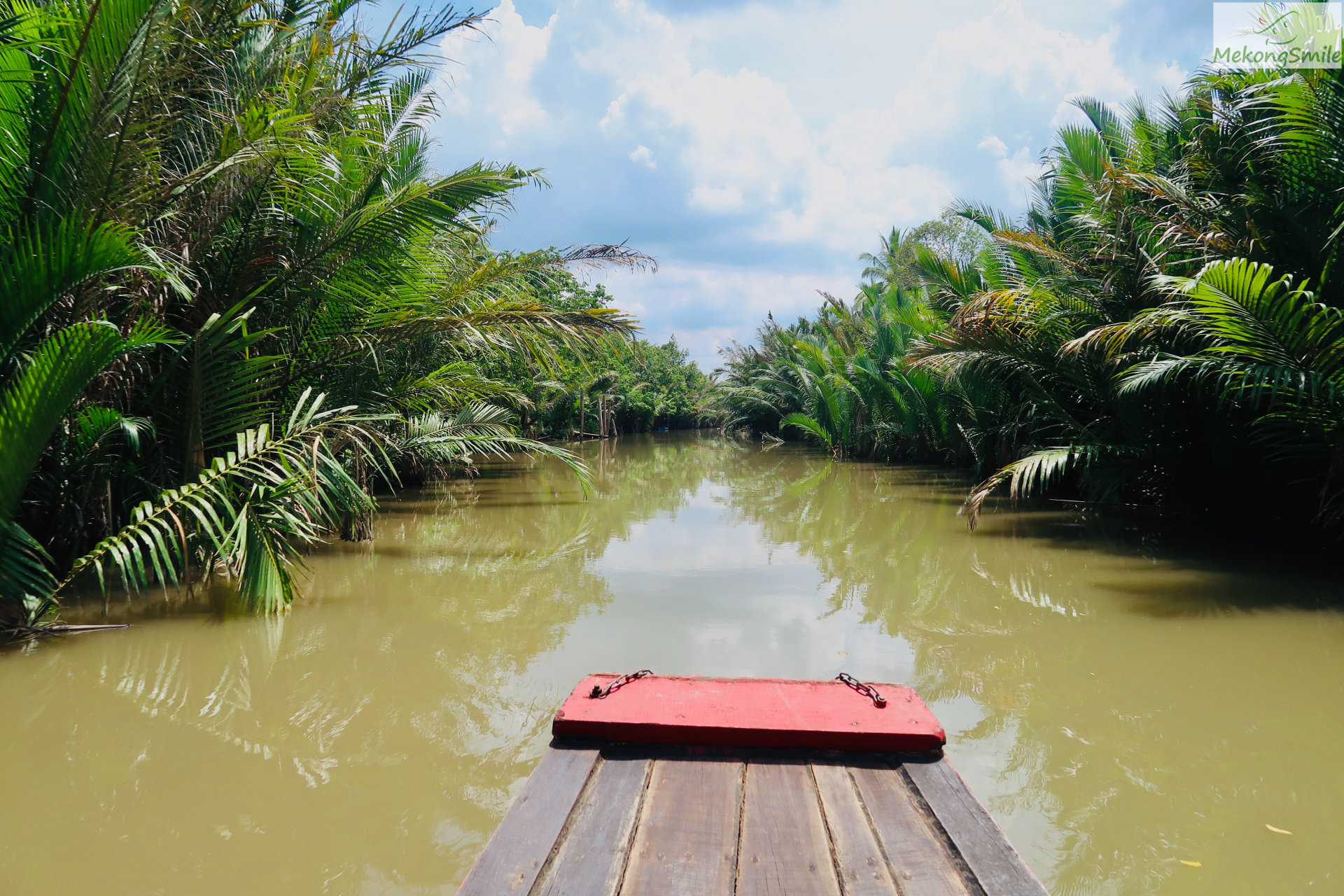 Beautiful small water coconut canal in Ben Tre - Mekong deltta Ben Tre 1 day tour