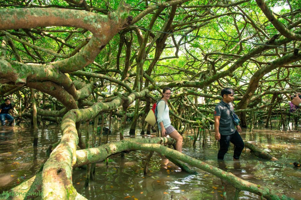Mekong Delta Cycling Tour in Small Village