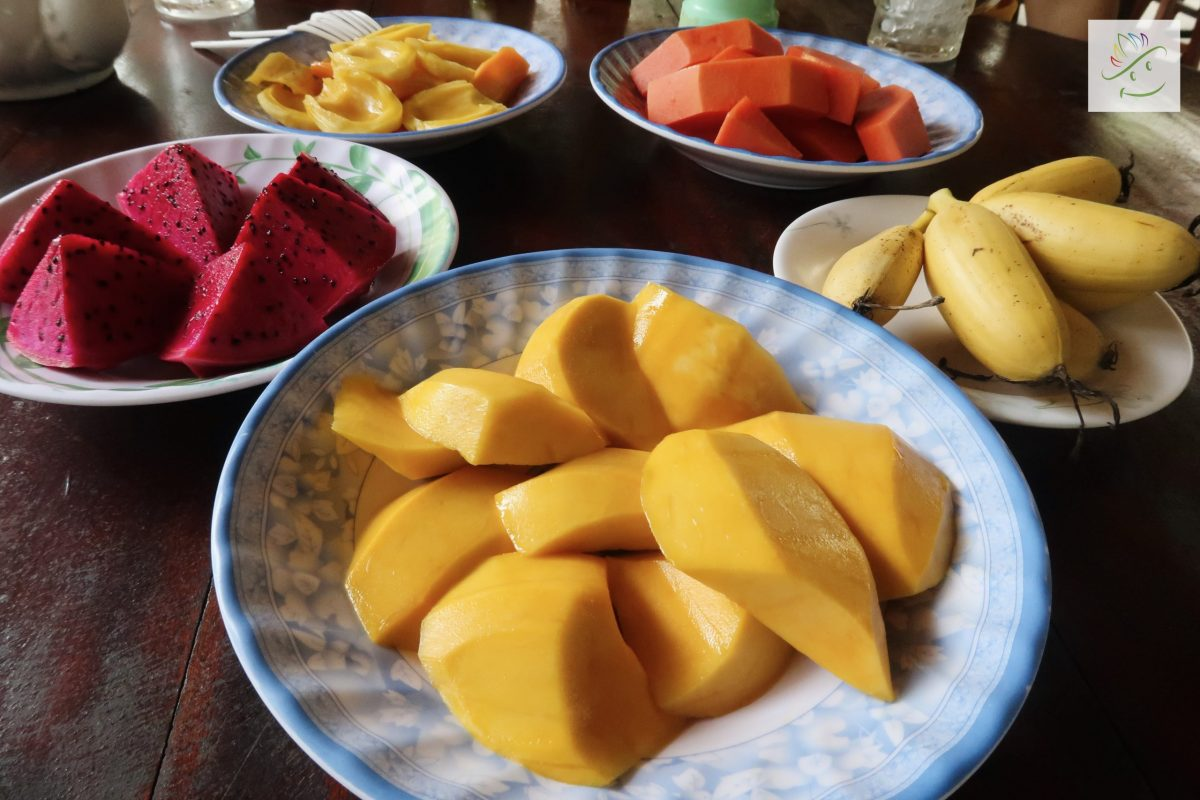 Enjoy fruits in Can Tho tropical fruit garden