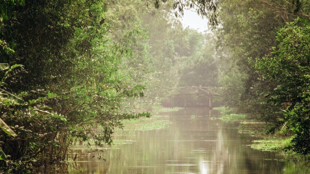 Floating market - Ecological Site