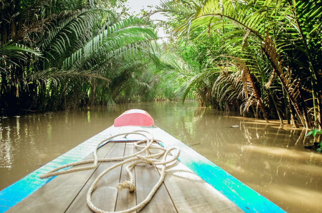 Canals of Nipa palm in Mekong Delta