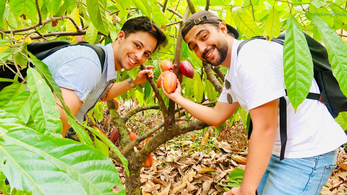 Check in organic cacao farm in Can Tho - Mekong Delta 3 days tour Can Tho - Bac Lieu - Soc Trang