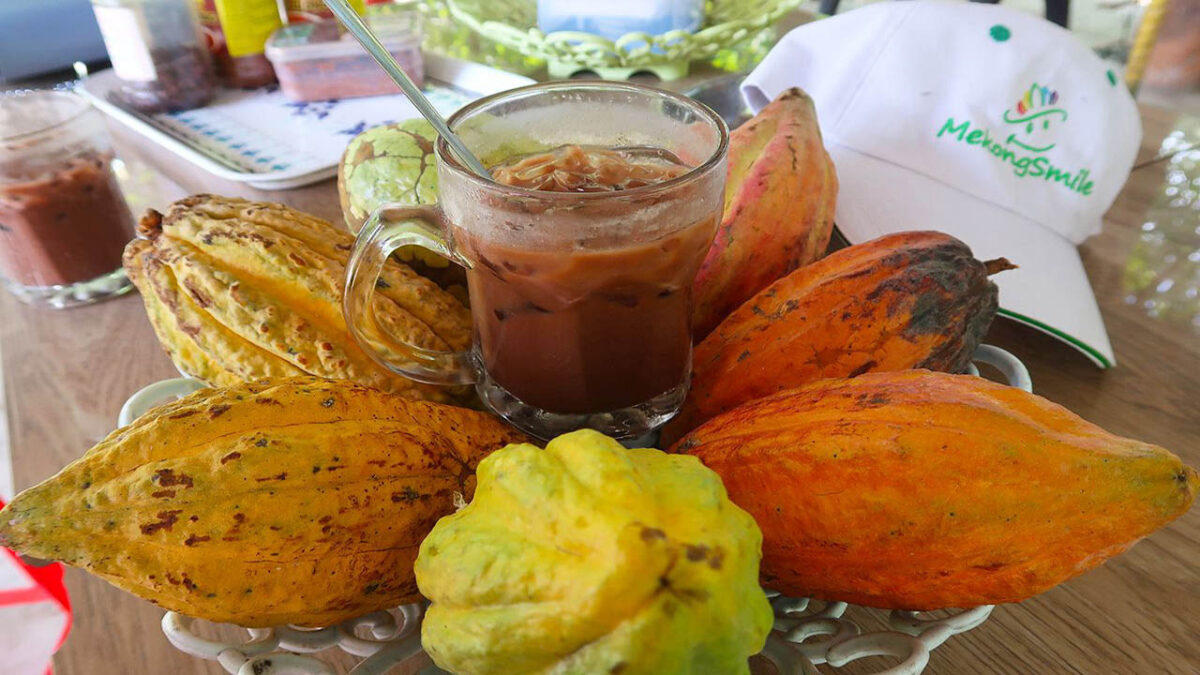 Visitors can enjoy a cool cocoa drink right here